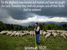 Jeremiah 10:21