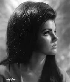 This portrait of Priscilla Presley hung in the living room at Graceland. Lisa Marie Presley, Priscilla Presley Joven, Elvis Y Priscilla, High Society, Divas, Elvis Presley Family, Star Wars, Glamour, Graceland