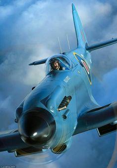 spitfire mk XIV photo reconanence