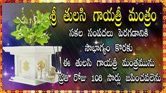 Sri Tulasi Gayatri Mantram 108 Times Chanting