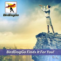 Where Do You Want to Be? BirdDogGo Yellow Pages Mobile App finds it for you! DOWNLOAD THIS APP HERE www.birddoggo.com #whitepages #yellowpages