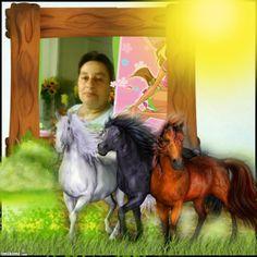 kocham konie....