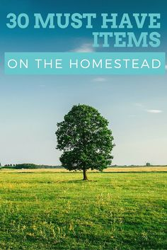 Here is our list of 30 must have items for the homestead...plus a free printable to help you through it!