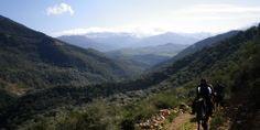Tour Madonie a Cavallo
