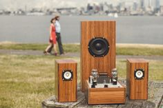 This set of speakers is inspirational for me because it is effective when it comes to making the speakers look like they belong with each other, while they cannot be identical. It would be important for me to learn how to achieve this, as it is one of the necessary specifications.