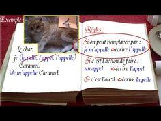1000 mots en français : voix voie voit, écrire sans faute : cm1, clis - YouTube