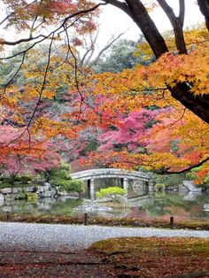 Sentō-gosho Garden, #Kyoto, #Japan Vieille ville de Kyoto , jardins , 2000 temples , saisons magnifique , cerisier en fleurs , centre culturel traditionnel UNESCO.