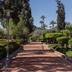 Must-do in #Marrakech - Have a walk in Cyberpark #garden #jardin #parc #Maroc #Morocco #travel #voyage #magazine #ipad #nowmaroc