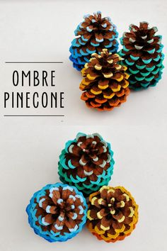 DIY Painted Ombre Pinecones Tutorial from WhimZeeCal. This is not in the tutoria., DIY Painted Ombre Pinecones Tutorial from WhimZeeCal. This is not in the tutorial but I always heat pincones up in the oven to really get the bugs out. Autumn Crafts, Fall Crafts For Kids, Holiday Crafts, Fun Crafts, Diy And Crafts, Christmas Crafts, Pine Cone Art, Pine Cone Crafts, Pine Cones
