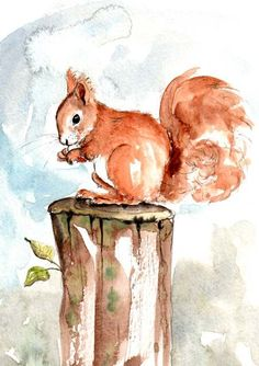 Puzzle The image of a squirrel - online jigsaw puzzle games. Jigsaw puzzles, puzzle games for kids. Play free jigsaw puzzle The image of a squirrel. Pastel Watercolor, Watercolor Animals, Simple Watercolor, Tattoo Watercolor, Watercolor Trees, Watercolor Background, Watercolor Landscape, Squirrel Illustration, Watercolor Illustration