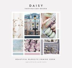 Daisy Inspiration Board | Seaside Creative