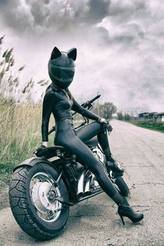 Cats on Bikes??? That's a potential Cat-asstrophe!
