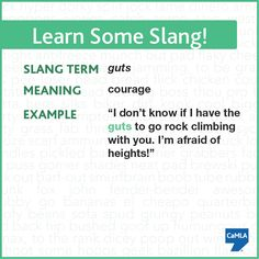 Can you use this slang term in a sentence?