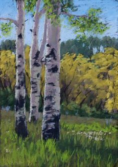 Tres Amigos - aspen trees in summer meadow, pastel painting, plein air, 12x9 inches