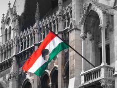 Az 1956-os forradalom Magyarország népének a sztálinista diktatúra elleni forradalma és a szovjet megszállás ellen folytatott szabadságharca, amely a 20. századi magyar történelem egyik legmeghatározóbb eseménye volt. A budapesti diákoknak az egyetemekről kiinduló békés tüntetésével kezdődött 1956. október 23-án, és a fegyveres felkelők ellenállásának felmorzsolásával fejeződött be Csepelen november 11-én. Hungary History, Courageous People, Heart Of Europe, Cities In Europe, Documentary Photography, Budapest Hungary, Homeland, Revolution, Sands