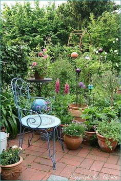 potted garden! **yes this I want this***