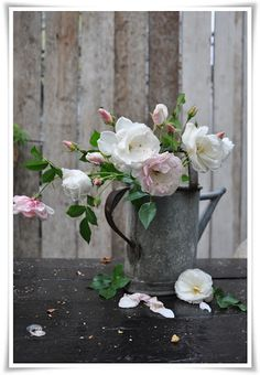 Antique watering can with garden roses