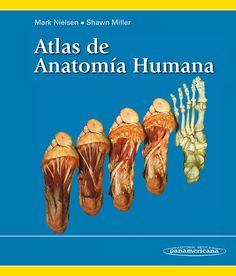 ATLAS DE ANATOMÍA HUMANA  Autores: Mark Nielsen / Shawn Miller  ISBN…