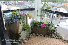 puutarha parvekkeella - Google-haku