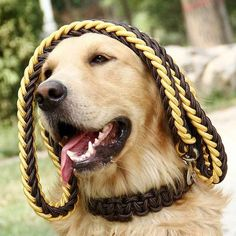 Dog Collar Strong Traction Rope Leashes Traction Rope Collar Set Nylon Large Pet Rope Product J2Y