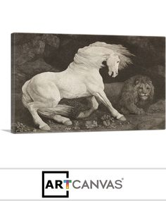 Ready-to-hang A Horse Affrighted at a Lion 1788 Canvas Art Print for Sale canvas art print for sale. Art Prints For Sale, Canvas Art Prints, Dinosaur Stuffed Animal, Lion, Horses, Animals, Leo, Animales, Animaux