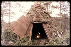 Eliwagar : How to make a Nordic Natural Shelter