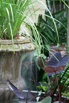 water feature/