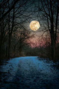 De maan boven het pad