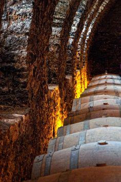 Wine cellar of the Chateau de Pierreclos in Burgundy