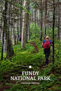 FundyTreasures & Tides Ride Road Trip stop #4 FUNDY NATIONAL PARK | The great outdoors somehow seems even greater out here. From trails and beaches to golf and camping, this park is a gem waiting to be discovered.