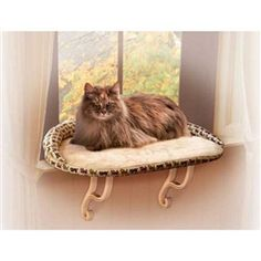 K&H Kitty Sill Deluxe with Bolster -- your cat will feel secure with the bolstered kitty sill.  This kitty sill will give your cat a safe place to view the outdoors while enjoying the sunshine.  He will love the security of the bolster.    $30.95 http://www.shopforpuppy.com/KH_Kitty_Sill_Deluxe_with_Bolster_p/kh3097.htm.