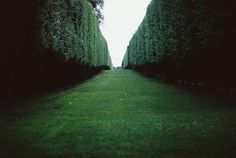 emerald green way. alice in wonderland?