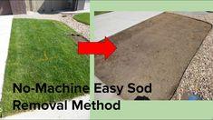 Removing Sod, Garden Features, Outdoor Decor, Outdoor Stuff, Outdoor Spaces, Outdoor Gardens, Landscaping Ideas, The Creator, Backyard