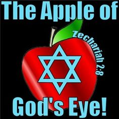 Zechariah 2:8 - The Apple of God's eye!. Praise G-D For HIS People ISRAEL, all GLORY to G-D
