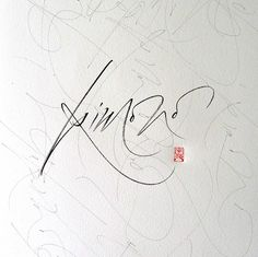Silvia Cordero Vega - Calligraphy artist Someday my signature would b as beautiful as this.. not today.... some day.