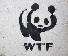 WTF or WWF?