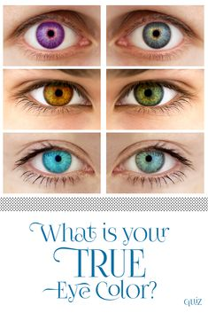 What Is Your True Eye Color? Do you have the charm of someone with baby blue eyes, or do you keep situations calm with your soothing brown irises? Take our quiz and discover which true eye color lies within your soul! Blonde Babys, Color Quiz, Eye Color Test, Eye Color Facts, Long Hair Tips, Color Quotes, Fun Quizzes, Beautiful Eyes, Blue Eyes