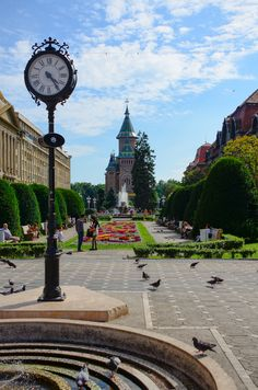 Timisoara, Romania's green and lively Victory Square