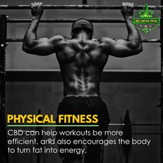 PHYSICAL FITNESS: CBD can help workouts be more efficient, and also encourages the body to turn fat into energy. Physical Fitness, Hemp, Physics, Workouts, Encouragement, Fat, King, Body Sculpting Workouts, Physics Humor