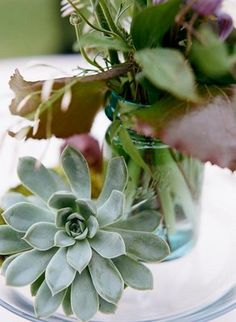 small blue mason jar with succulents