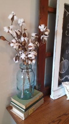 cotton stems in mason jar