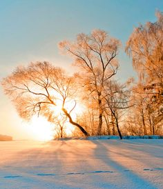 Beautiful winter wonderland. Traumhafte Winterlandschaft.