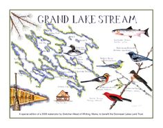 Grand Lake Stream Maine Map.15 Best Dobsis Images Big Lake Grand Lake Lakes