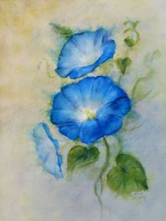 Watercolor painting by Melody Greenlief Morning Glory for Sale! Watercolor Pencil Art, Easy Watercolor, Watercolor Cards, Watercolour Painting, Watercolor Flowers, Painting & Drawing, Watercolors, Morning Glory Tattoo, Canvas Art