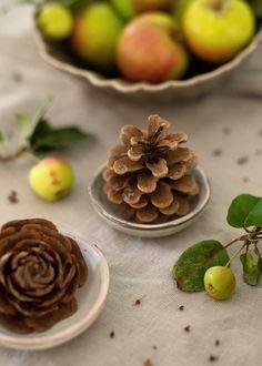bloggeburtstag mit herbstkranz + verlosung - Wunderschön gemacht Pine Cones, Panna Cotta, Ethnic Recipes, Blog, Handmade, Fall, Birthday, Diy, Beautiful