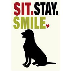 Labrador Retriever Sit Stay Smile Dog Wall Decor