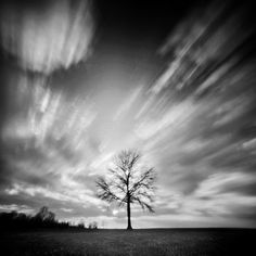 Pinhole, Darren C. on Flickr. The cloud and outer branches of the tree are blurred as they would have been moving throughout the long exposure.