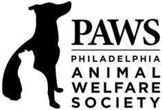 Annual Foster Challenge a Huge Success - Philadelphia Animal Welfare Society (PAWS) Animal Law, Animal Welfare Society, Foster Animals, Walk In Clinic, Veterinary Care, Animal Protection, Feeling Sick, Health And Safety, Animal Rescue