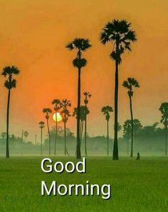 Good Morning Msg, Good Morning Cards, Good Morning Flowers, Good Morning Greetings, Morning Prayer Quotes, Morning Qoutes, Morning Prayers, Morning Gif, B Letter Design