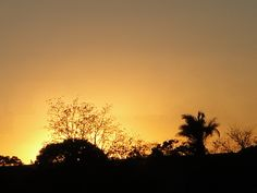 Minas Gerais- Brasil